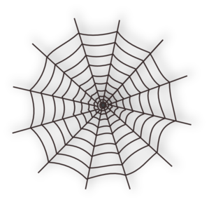 Spider Web PNG icons