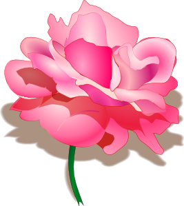 Rose 2 PNG clipart