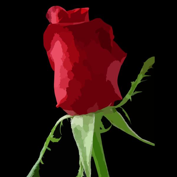 Rose Tone 1 PNG Clip art