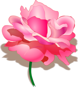 Rose 2 PNG icons