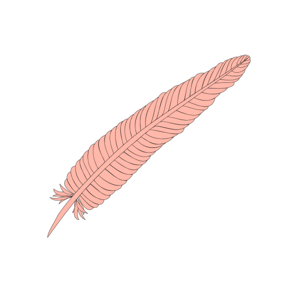 Feather Trace PNG Clip art