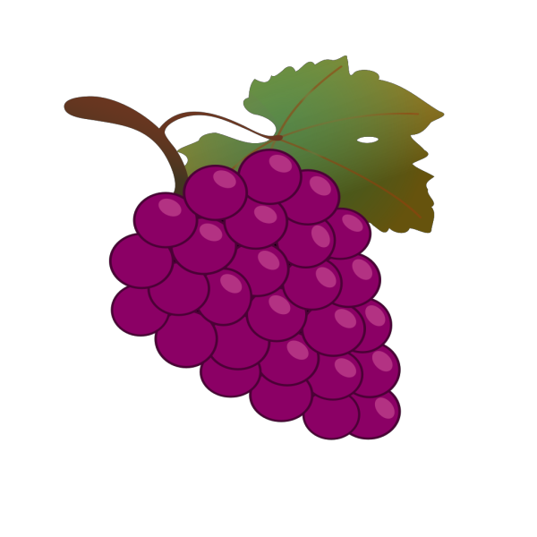 Grape Black PNG icons