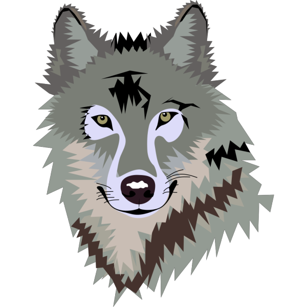 Wolf PNG Clip art