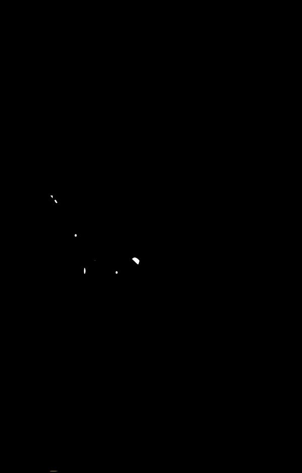 Black Dragon PNG Clip art