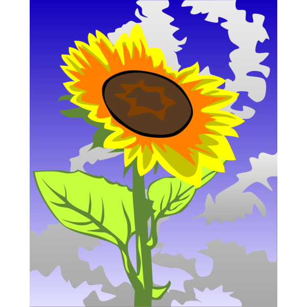 Sunflower Against Blue Sky PNG images