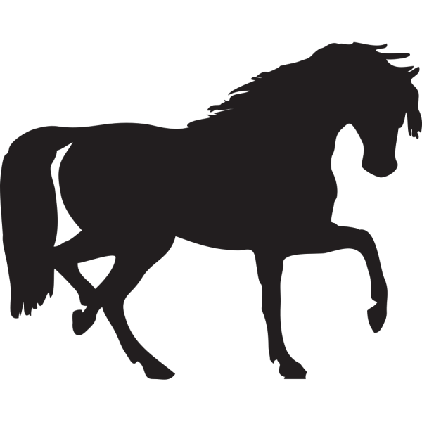 Horse Silhouette PNG Clip art