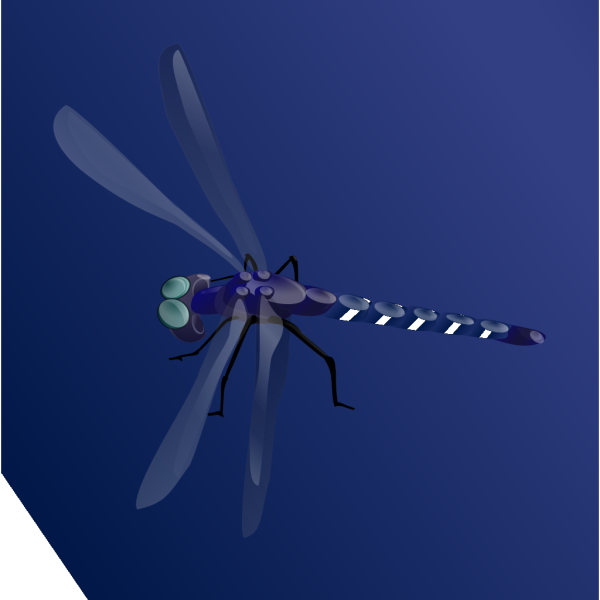 Blue Dragonfly PNG Clip art