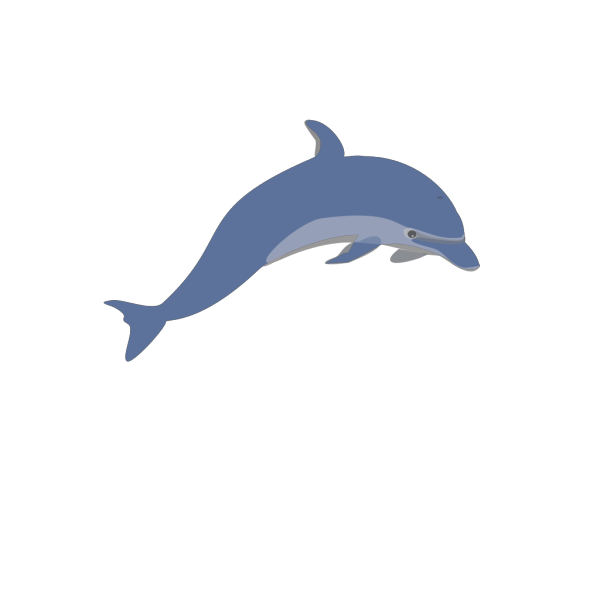 Dolphin 3 PNG clipart