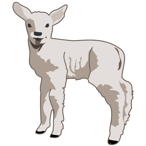Small Sheep PNG image