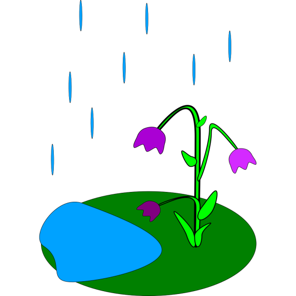 Rain Flowers PNG Clip art