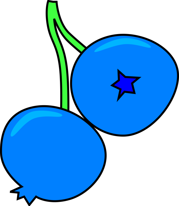 Blueberries PNG images