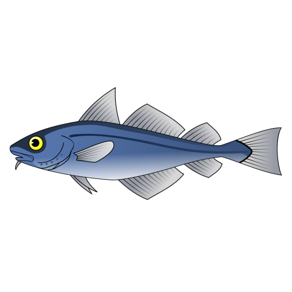 Fish 13 PNG clipart