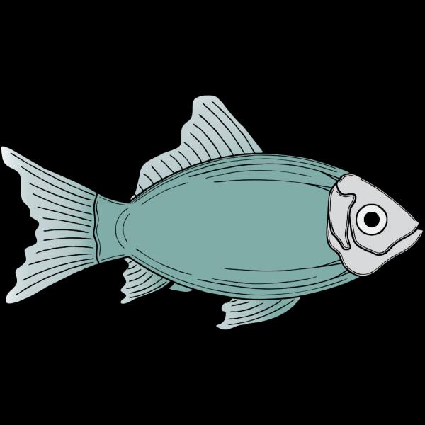 Generic Fish PNG images