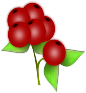 Blue Berry PNG clipart