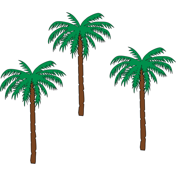 Palm Trees On Beack PNG Clip art