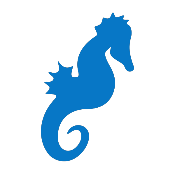 Seahorse V5 PNG Clip art
