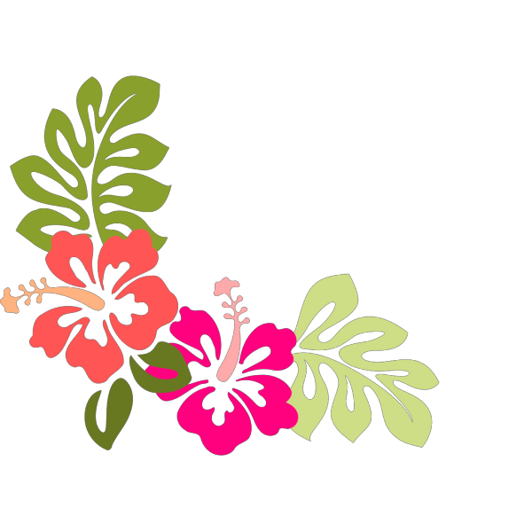 Hibiscus 8 PNG clipart
