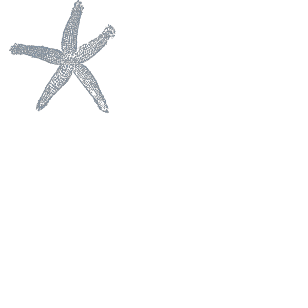 Maehr Blue Starfish PNG Clip art