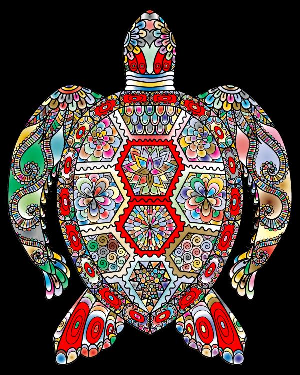 Turtle PNG Clip art