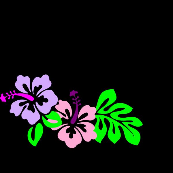 Hibiscus Flower Blue PNG Clip art