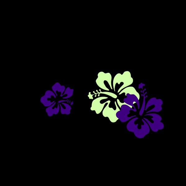 Hibiscus 15 PNG Clip art