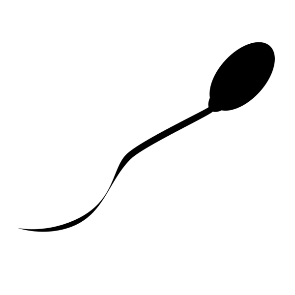 Swimmer PNG Clip art