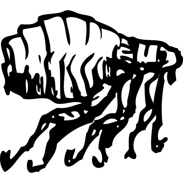 Flea PNG images