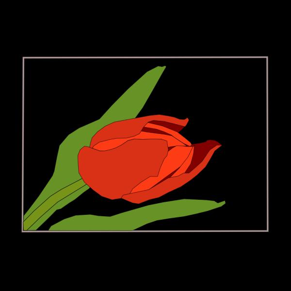Tulipan PNG Clip art