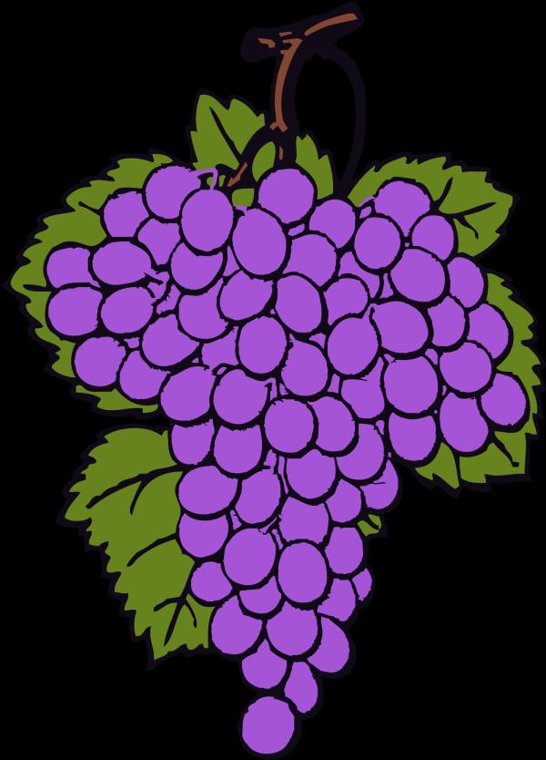 Vine Art PNG Clip art
