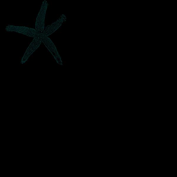 Maehr Starfish Wedding PNG Clip art