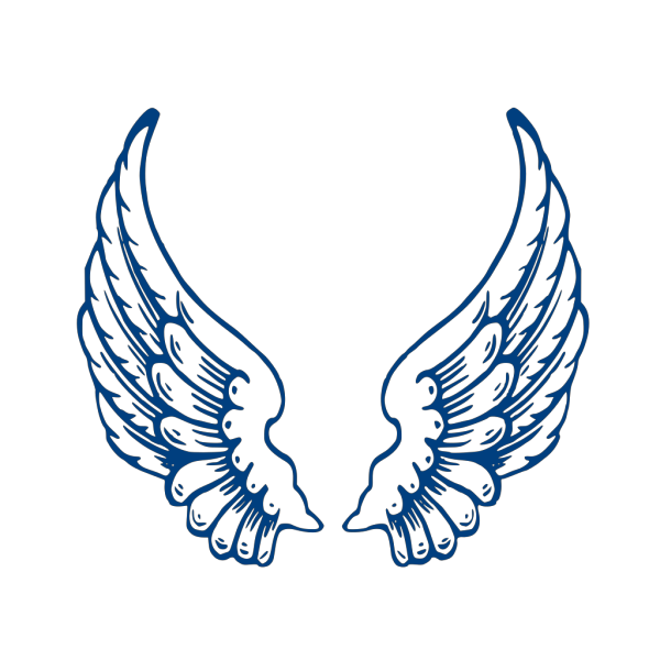 Angelwings  PNG Clip art