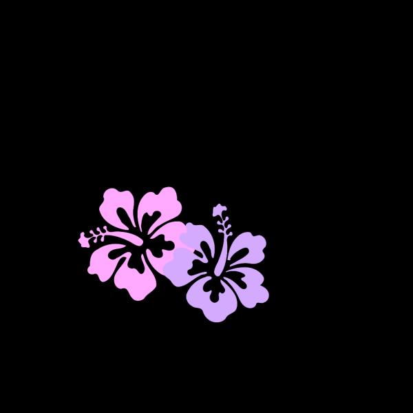 Hibiscus 27 PNG Clip art