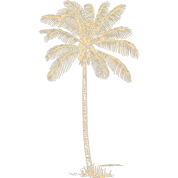 Palm Tree PNG icons