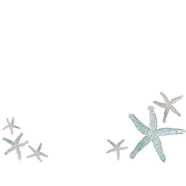 Starfish Prints PNG icons