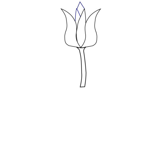 Tulip PNG images