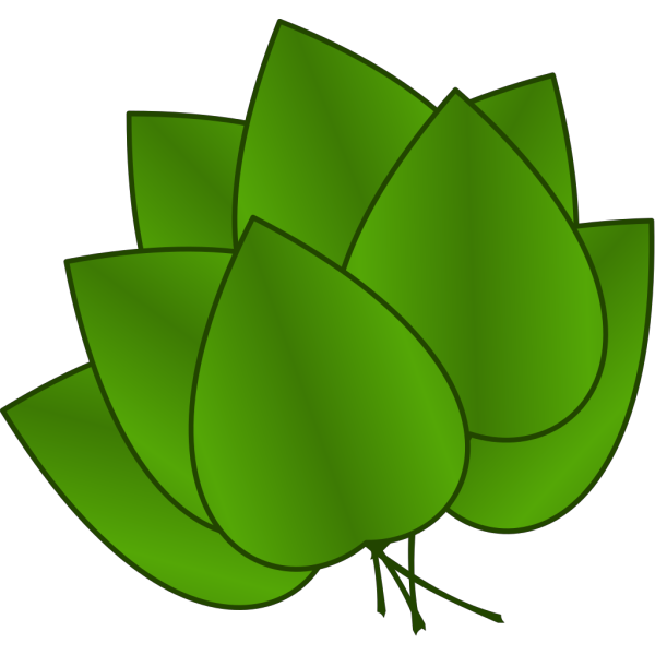 Leaves PNG Clip art