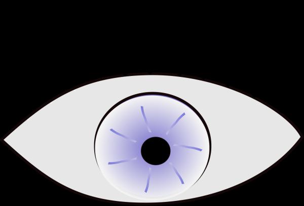 Eye Sketch PNG Clip art