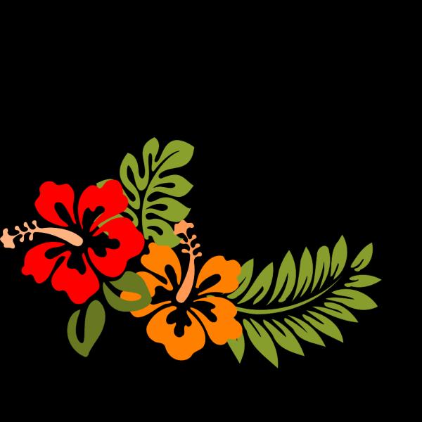 Hibiscus Teal & Green PNG Clip art