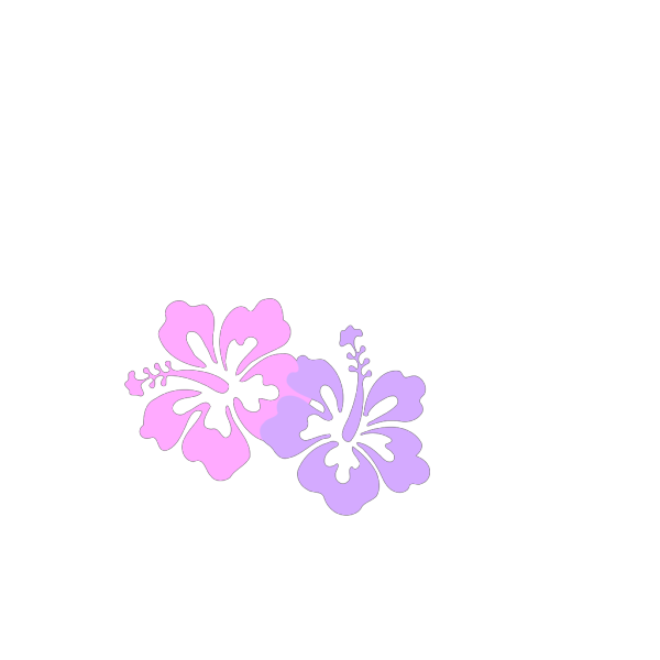 Hibiscus Teal & Green PNG Clip art