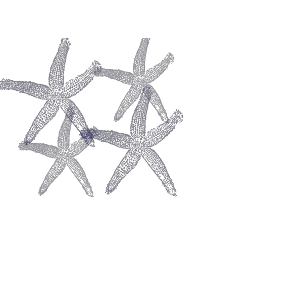 Starfish Prints In Light & Dark Blue PNG Clip art