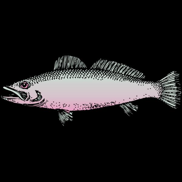 Fish 14 PNG Clip art