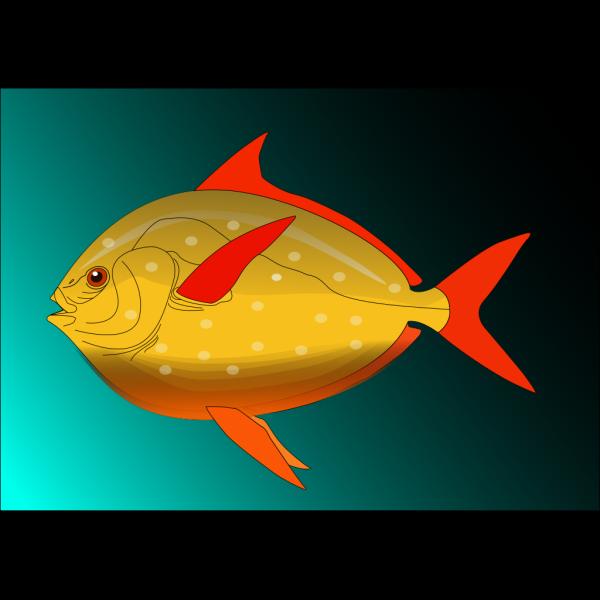 Fish 16 PNG Clip art