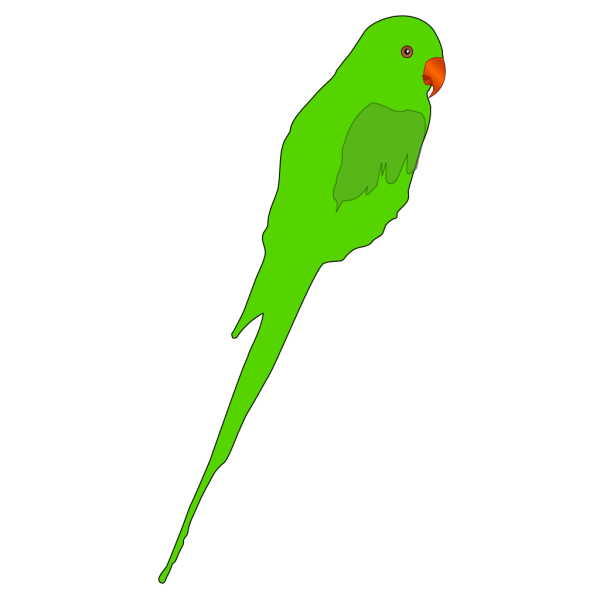 Parrot PNG images
