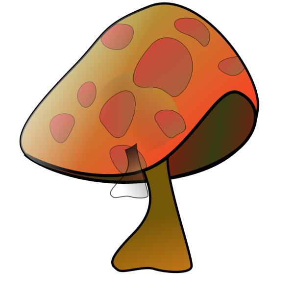 Mushroom PNG images