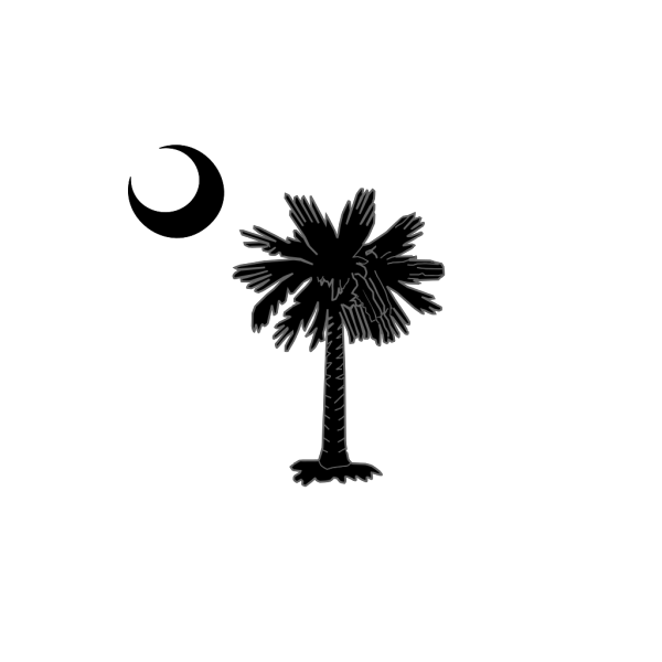 Sc Palmetto Tree Blue Right Side Moon PNG image