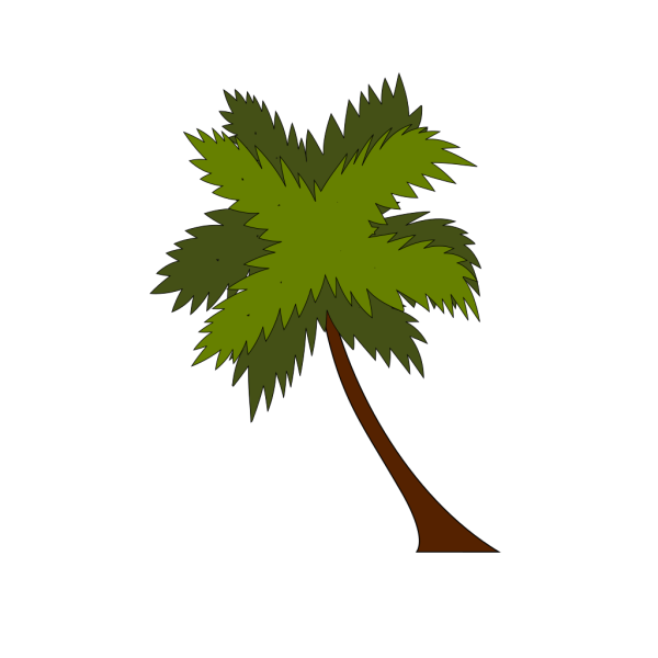 Palm Tree PNG Clip art