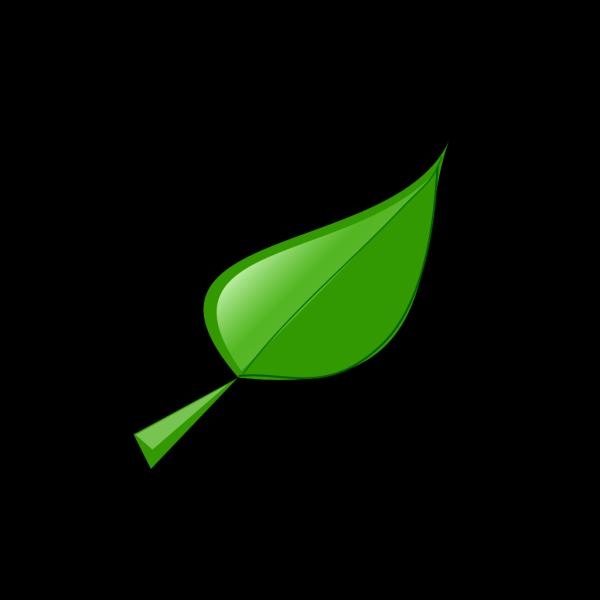 Leaf PNG Clip art