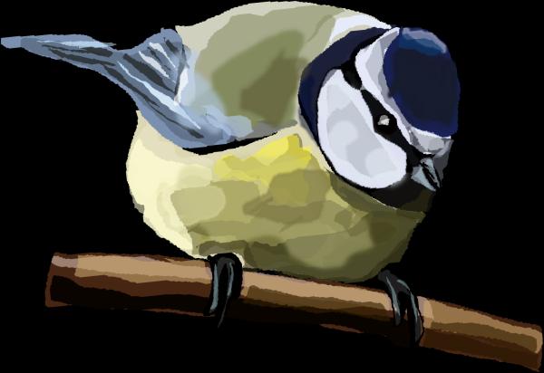 Blue Bird Left PNG Clip art