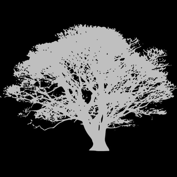 Christmas Tree PNG icons