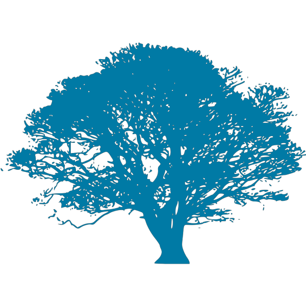 Blue Oak Legacy PNG images